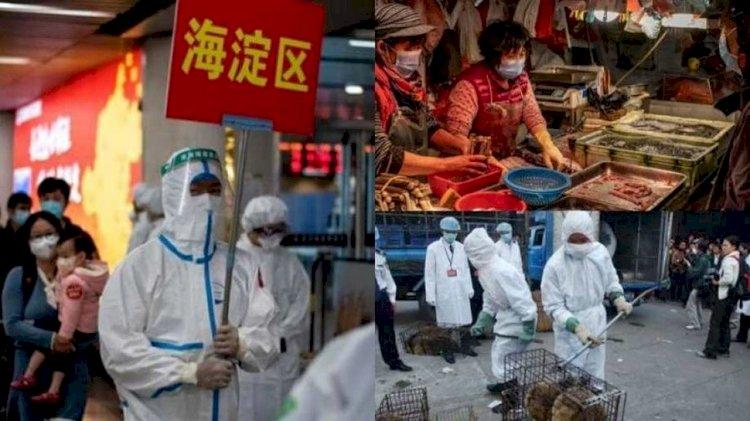 Coronavirus को लेकर खुलासा करने वाले चीन की महिला पत्रकार को चार साल की सजा, मिलने के लिए भी कोर्ट ने किया मना