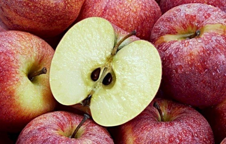 Apple benefits: खतरनाक बीमारियों से बचाता है सेब, हर सुबह 1 सेब खाने के ये ये है फायदे….